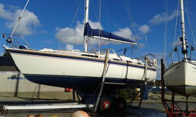 WESTERLY OCEANRANGER 38 GORGEOUS, RECENT ENGINE  £59950