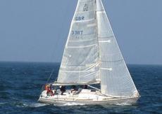 Dehler 36DB Yacht
