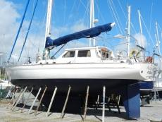 Premier Bluewater 58