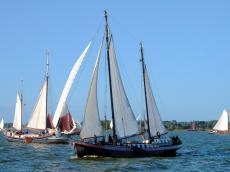 Sailing clipper Onrust charter 24 persons