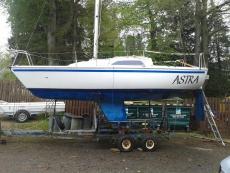 HUNTER SONATA - For Sale (GBR 8295)