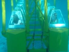 Aruba tourism business for sale