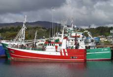Proposals invited for 3 pelagic trawlers