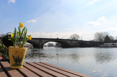 KEW BRIDGE: 2-bed houseboat with spectacular views for rent