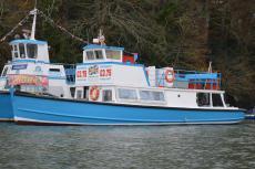 Passenger vessel (50') Class V & VI