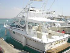 Sea Ray 310AJ