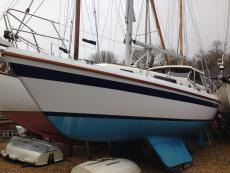 LM28  motor sailer for sale