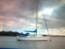 """Colvic 26 Sailer """"PADDIWACK"""""""