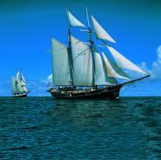 Two-Masts Top-Sails schooner