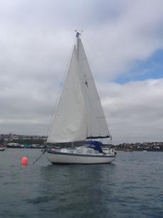 Trident 24  Motor/Sailor
