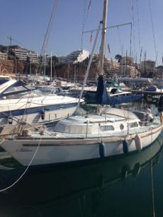 Warrior 35 yacht