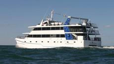 34.5m Passenger catamaran for sale