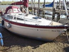 Truman 30 (available)