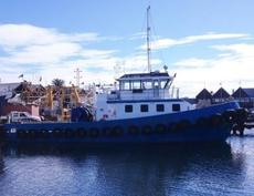Aluminium 28 TBP harbour towing tug