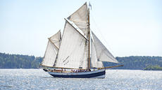 Sailing vessel Belle Amie