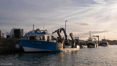 Mussel barge