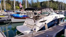 SEA RAY   SUNDANCER 260