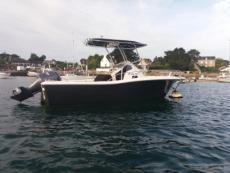2011 WHITE SHARK 228