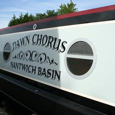 Dawn Chorus 8% (4 week) Share