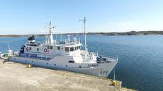 Explorer Yacht/Day Pax