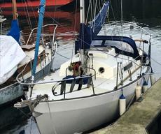 Frances 26 For Sale