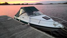 Bayliner 1952 cuddy