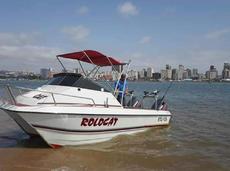 Ace Cat 555 Deep Sea Boat