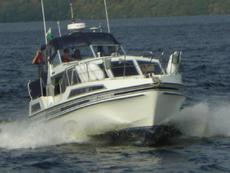 Broom Crown 37