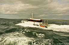 Crew Boat   Wind farm vessel