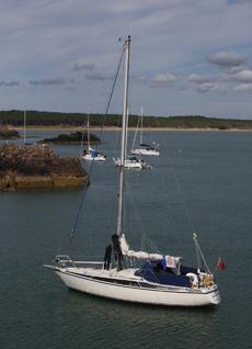 Maxi 95 cruising yacht 9.5m