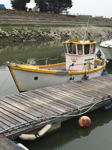 IP24 Angling boat