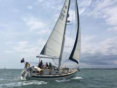 Westerley Seahawk