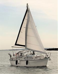 Albin 25 Motor Sailer