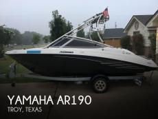 2013 Yamaha AR190
