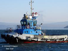 Damen ice class tug 2700 hp / 39 t BP / 2006 blt for sale on FE