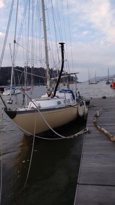 Bargain boat