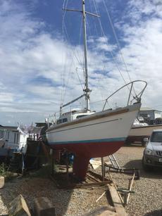 21fy Yacht