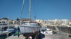 Golden Hind 31 -sailing yacht
