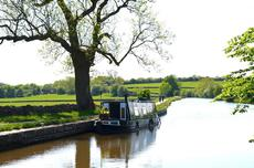 36' Traditional Pedigree Narrowboat