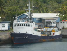Cheap - very small Cargo ship