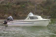 2006 Bonwitco 449c