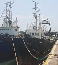 1993BLT FISHING STERN TRAWLER