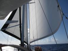 Wing and Wing Headsails Downwind