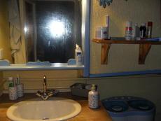 shower room hand basin