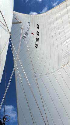 Number 1 Genoa