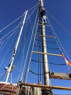 Main mast ratlines December 2017