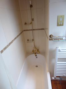Bathroom shower over bath