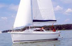Viva Sail