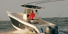 Seaswirl Striper Center Console