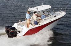 Sea Fox 256WA